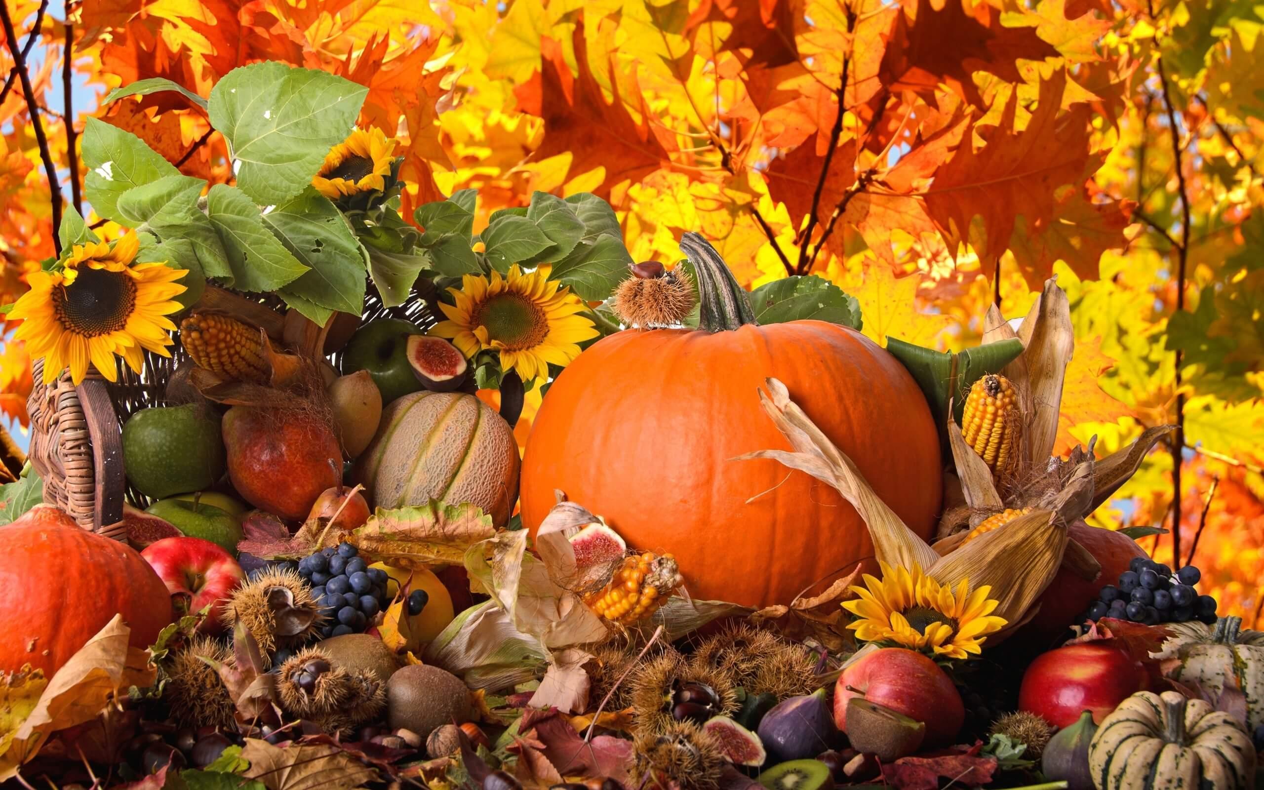 Правильное питание осенью